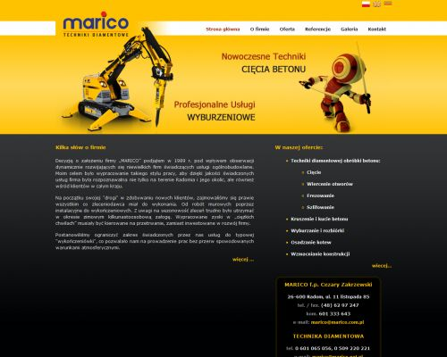 Strona www dla firmy Marico