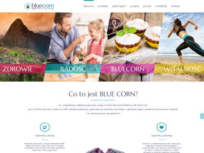 Strona www dla marki Bluecorn