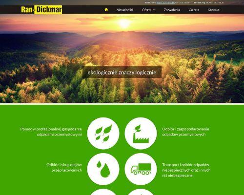 Strona www dla firmy Ran Dickmar