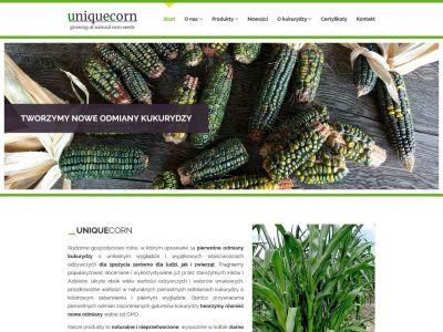 Strona www z indywidualnym projektem
