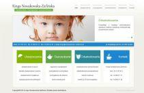 Strona www dla agenta ubezpieczeniowego