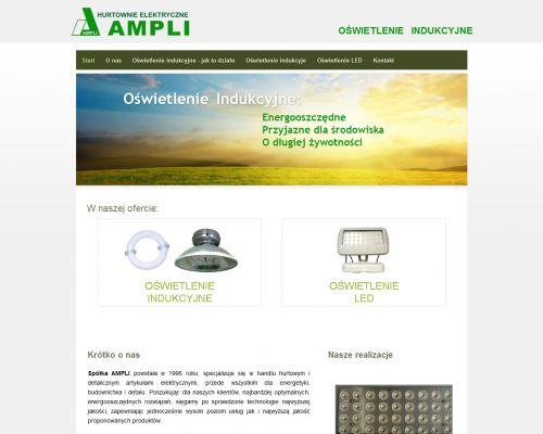 Strona www dla firmy Ampli