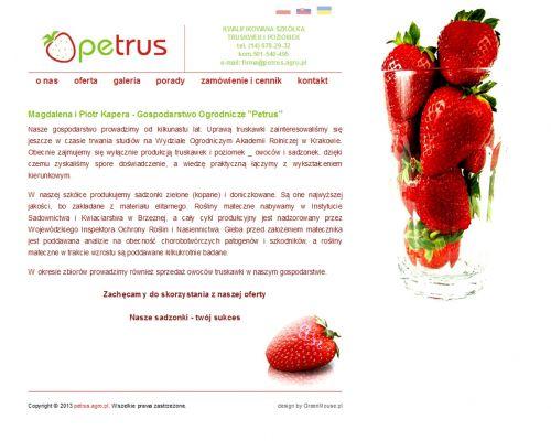 Strona www dla firmy Petrus